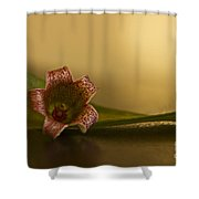 Bottle Tree Flower Shower Curtain