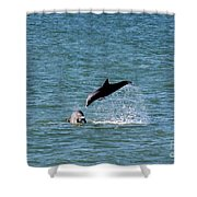 Bottlenose Dolphins In The Ocean Shower Curtain