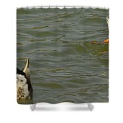 Bottoms Up Shower Curtain