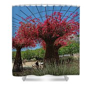 Bougainvilleas Tree Scultures Shower Curtain