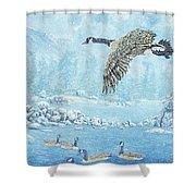 Boulder Bay Geese Shower Curtain