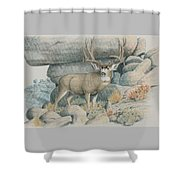 Boulder Buck  Shower Curtain