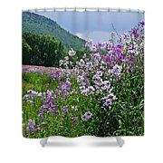 Boundary Of Beauty Shower Curtain