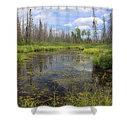 Boundary Waters Beauty Shower Curtain