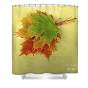 Bouquet De Feuilles / Bunch Of Leaves Shower Curtain