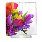 Spring Posy Shower Curtain