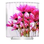 Bouquet Of Chrysanthemums Shower Curtain