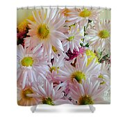 Bouquet Of Daisies Shower Curtain