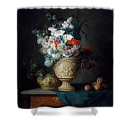Bouquet Of Flowers In A Terracotta Vase With Peaches And Grapes Shower Curtain