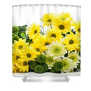 Bouquet Of Fresh Spring Flowers Isolated On White Shower Curtain