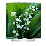 Bouquet Of Happiness Shower Curtain