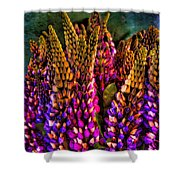 Bouquet Of Lupin Shower Curtain