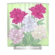 Bouquet With White And Pink Peonies.spring Shower Curtain