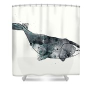 Bowhead Whale From Whales Chart Shower Curtain by Amy Hamilton