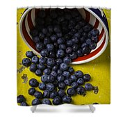Bowl Pouring Out Blueberries Shower Curtain