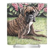 Boxer Girl Shower Curtain