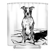 Boxer In The Dirt Shower Curtain