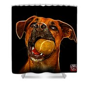 Boxer Mix Dog Art - 8173 - Bb Shower Curtain