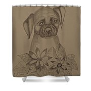 Boxer Pup 16-01 Shower Curtain