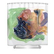 Boxer Pup Shower Curtain