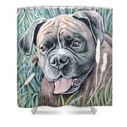 Boxer Yosi Shower Curtain