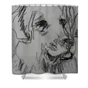 Boy And Dog Under Sky Shower Curtain