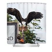 Boy Feeds Mr. Bald Eagle Shower Curtain