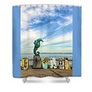 Boy On The Seahorse Shower Curtain