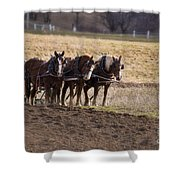 Boy Waiting With Horses Shower Curtain