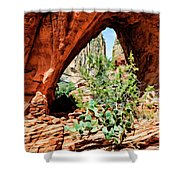 Boynton Canyon 04-634 Shower Curtain