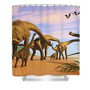 Brachiosaurus Beach Shower Curtain