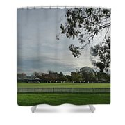 Bradman Oval Bowral Shower Curtain