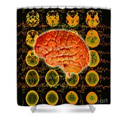 Brain Composite Shower Curtain