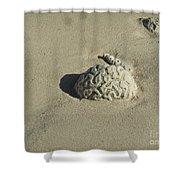 Brainzzzz Shower Curtain