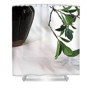 Branch, Gourd And Shadows Shower Curtain