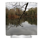 Branch And Water Shower Curtain