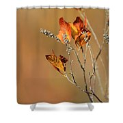 Branch Of Autumn Shower Curtain