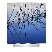 Branch Reflections 484 Shower Curtain