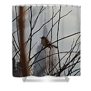 Branch With A View Shower Curtain