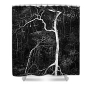 Branched Shower Curtain