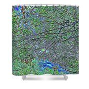 Branches And Sky Shower Curtain