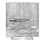 Branches In Silver Waters Shower Curtain
