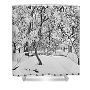 Branches In Snow Shower Curtain