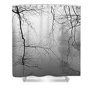 Branches In The Morning Mist Shower Curtain