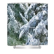 Branches In Winter Season With Fresh Fallen Snow Shower Curtain