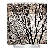 Branches Silhouettes Mono Tone Shower Curtain