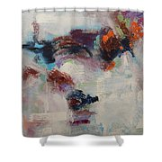 Brand New Vision Shower Curtain