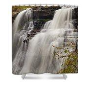Brandywine Falls IIi Shower Curtain