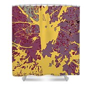 Brandywine  Maple Fall Colors 7 Shower Curtain