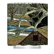 Brandywine Springhouse Shower Curtain
